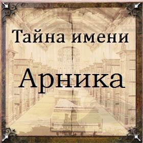 Тайна имени Арника
