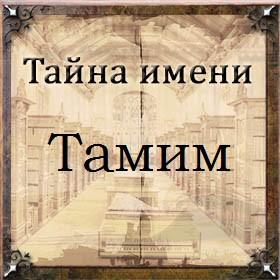 Тайна имени Тамим